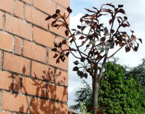 werk van cursisten boom